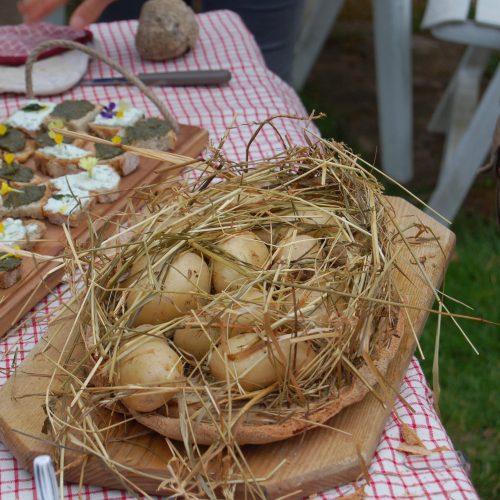 Le jardin de Gribouille - pommes de terre au foin